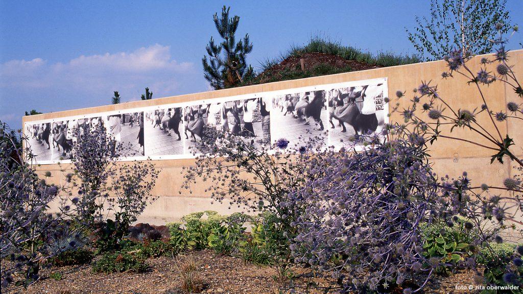 Fotowand Park an der Grenze Laa a d Thaya mit Zita Oberwalder