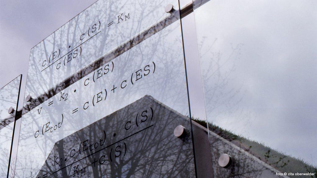 Michaelis-Formel mit Erdwall TU Graz Biokatalyse
